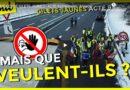 [Vidéo] Paroles de Gilets Jaunes en Haute-Savoie par Cemil Choses à te dire