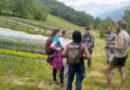 Nouvelles Initiatives pour l'Alimentation locale dans les Alpes
