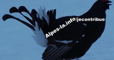 Rejoignez l'équipe de rédaction d'Alpes-La.info